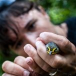 Extracting a Canada Warbler