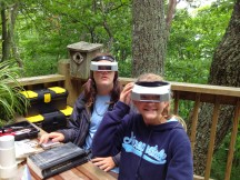 ALIEN BIRDWATCHERS !