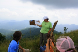 Learning about migration up on Big Bald