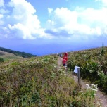 Exploring Big Bald Mountain on the Appalachian Trail