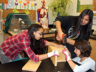 Middle school students building bird nest boxes.