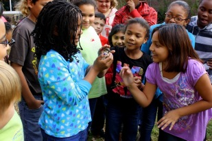 Students go eye-to eye with a schoolyard bird.