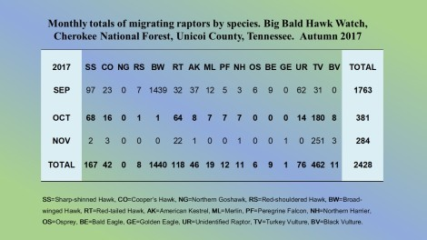 BBBS 2017 HAWKWATCH Website
