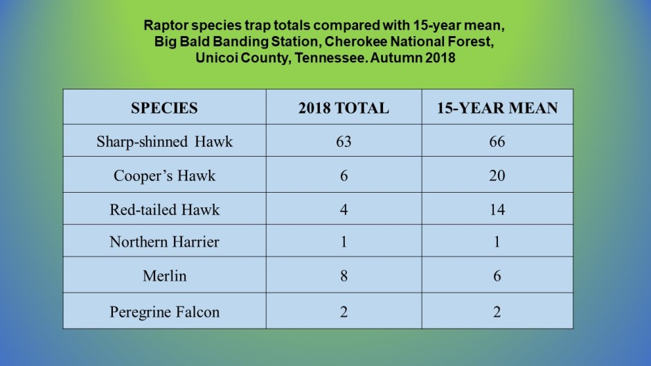 website 2018 raptor data slides
