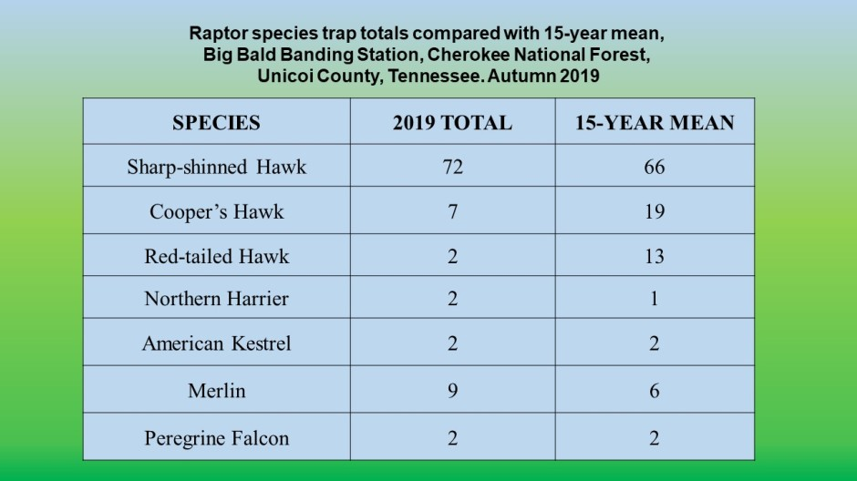 Website 2019 Raptor data slides
